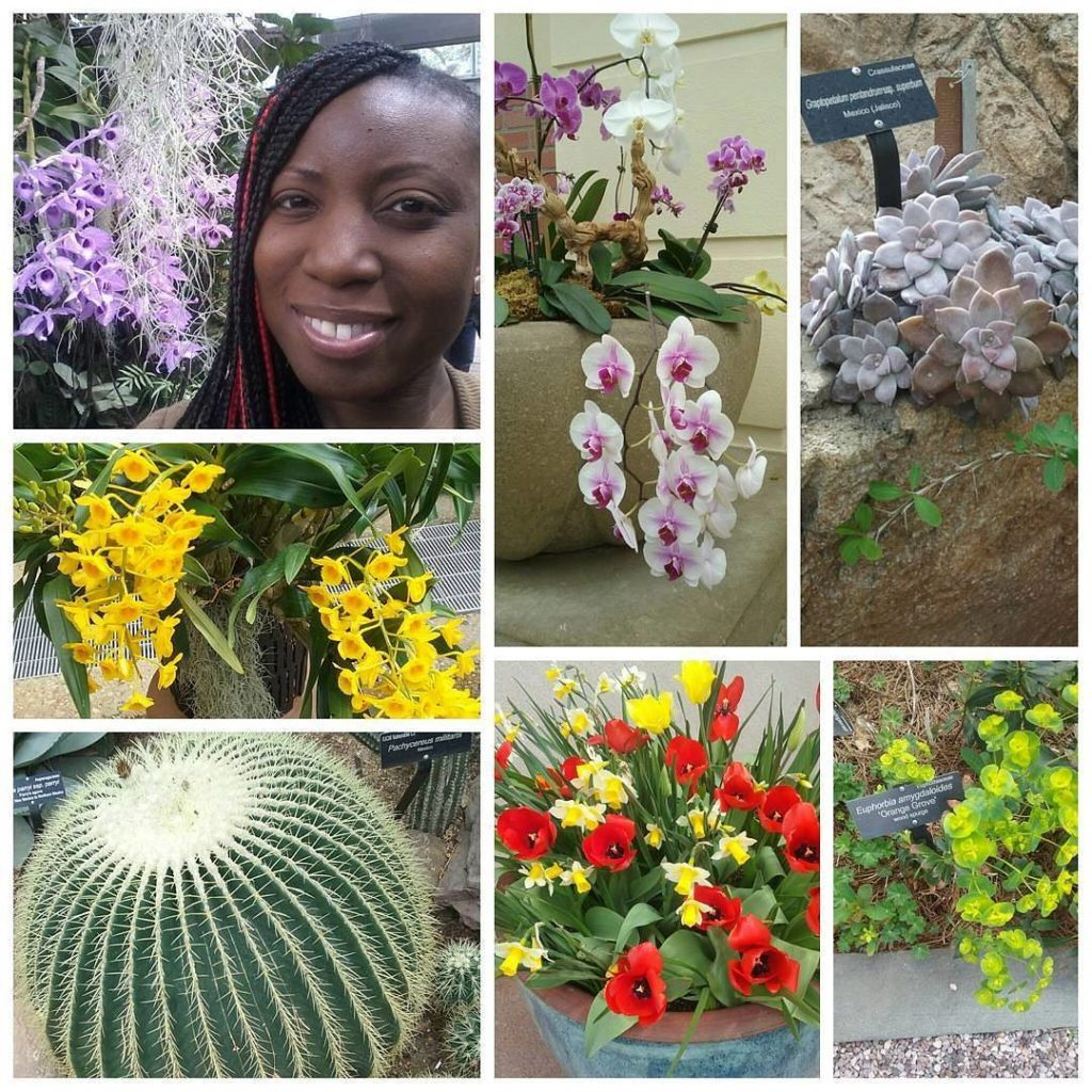 A visit to Botanical Garden in DC